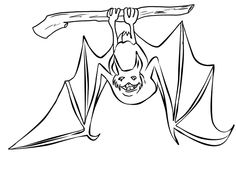 Coloring Page Bat In Cave
