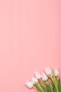 New wallpaper vintage flower backgrounds 40 Ideas Pastel Color Background, Flower Background Wallpaper, Flower Phone Wallpaper, Background Vintage, Beauty Background, Leaf Background, Background Pictures, Vintage Flower Backgrounds, Vintage Flowers Wallpaper