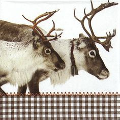 4x Paper Napkins - Reindeer brown - for Party, Decoupage Craft