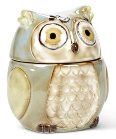 Another great find on #zulily! Small Turquoise Owl Cannister #zulilyfinds
