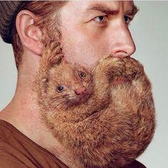 Protect thy beard   #beardfashion #beardoftheday  #beard #beards   #bar #barbe  #barba #life   #lifestyle#fashion  #skjegg #style   #menstyle   #sexy #love   #eyes #sucess  Tag us for shout out! Let's make us the biggest beard lifestyle community on Instagram.  #BeardFashion   #Beardoftheday
