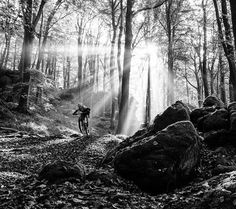 """Fall, maybe the best time of the year to ride your mountian bike, don't you think?  Image by @irmokeizer 