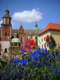 Wawel summer, Krakow