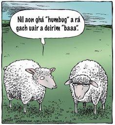 "Speed Bump: Every time I say ""Bah"" doesn't mean you have to say ""Humbug."" Speed Bump: Every time I say Bah doesn't mean you have to say Humbug. Sheep Cartoon, Cartoon Jokes, Funny Cartoons, Funny Cats, Funny Animals, Funny Sheep, Sheep Meme, Cartoon Fun, Funny Comics"