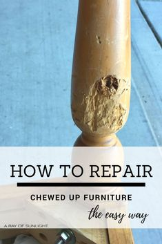 Refurbished furniture Easy - DIY Furniture How to Repair Damaged or Chewed Up Furniture the Easy way with Bondo by A Ray of. Furniture Repair, Paint Furniture, Furniture Making, Furniture Makeover, Furniture Design, Furniture Ideas, Luxury Furniture, Wooden Furniture, Furniture Online