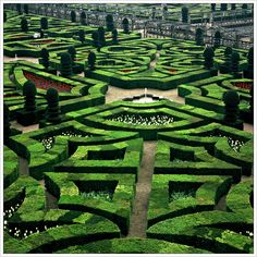 Gardens at Villandry Castle in France. This is the typical style of gardens found around French chateaux.