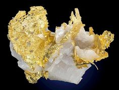 Native Gold in white Calcite! | Geology IN