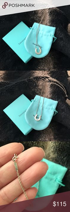 Tiffany & Co Horseshoe Pendant Tiffany & Co horseshoe pendant necklace. In excellent condition. Will look brand new with a cleaning which you can get at any Tiffany store for a small fee.  percent authentic purchased at South Coast Plaza store. It was purchased years ago so I don't have the receipt. You will get necklace, pouch, silver care card and box. Always stored in my jewelry box. Tiffany & Co. Jewelry Necklaces