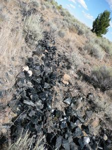 Glass Butte, Oregon- best rockhounding area in the NW. All types of Obsidian in one spot. 70 miles east of Bend
