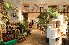エントランスではグリーンを展開。観葉植物や季節の鉢植え、ガーデンコーディネートを素敵に彩るかごやフレーム等も