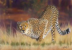 cheetah 2 painting