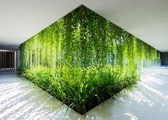 Go Green, Architecture, Plants, Garden, Green, Bar Napkin Productions, bnp-llc.com