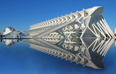 Prince Philip Science Museum, Valencia. When Spanish architect Santiago Calatrava designed the Prince Philip Science Museum (also known as the Museu de les Ciències Príncipe Felipe) in Valencia, Spain, he intended it to resemble a whale skeleton. Judging from this skeleton, he did a great job!...