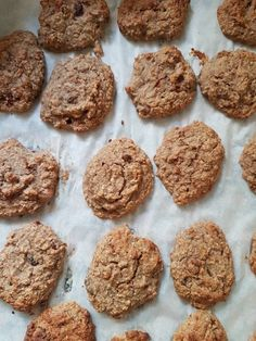 Vegan Baby, Healthy Cookies, Chocolate Cake, Healthy Recipes, Healthy Food, Frozen, Cupcakes, Sweets, Desserts