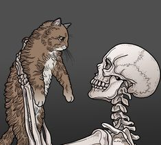 Skeleton and kitty Art And Illustration, Wallpaper Caveira, Skeleton Art, Cat Drawing, Skull Art, Crazy Cats, Dark Art, Art Inspo, Cool Art