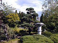 🥇Kelowna Homes & Condos For Sale British Columbia, Garden, Plants, Beautiful, Garten, Flora, Planters, Outdoor, Home Landscaping