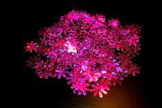 150DIE cut Scrapbook FlowersPaper Flower by MyDreamDecors on Etsy, $4.00