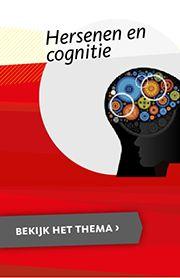 Leren van je fouten...niet bij hersenletsel  Hersenen en cognitie