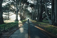 Point Reyes CA by GriffinLamb. Please Like http://fb.me/go4photos and Follow @go4fotos Thank You. :-)