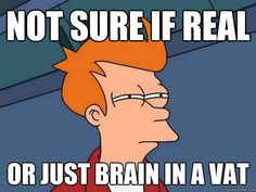 This meme raises one of the most essential questions in TOK: are we real, or are we just a brain in a vat hooked up to technology generating our experiences?. This dilemma is one of the prime limits to knowledge, as it shows how we can only prove reality with itself, so we cannot really prove if something is true or not. As ridiculous as this might sound, it is a legitimate argument that cannot be proved one way or another.