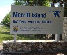 Paddle Merritt Island, National Wildlife Refuge, kayak, canoe, Florida
