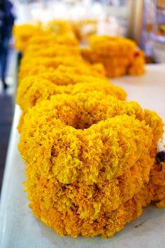Marigold, Bangkok's largest flower market, Pak Klong Talat, Thailand