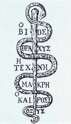 Æskulapstav. Den græske tekst gengiver den første aforisme af lægekunstens fader, Hippokrates, i dansk oversættelse 'livet er kort, kunsten lang, det rette øjeblik hastigt svundet'. Udateret tegning, formentlig fra renæssancen.