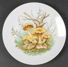 KUB51 Salad Plate by Kuba Porzellan | Replacements, Ltd. Pattern Code, Mushroom Art, China Dinnerware, Salad Plates, How To Take Photos, Decorative Plates, Stuffed Mushrooms, Tableware, Cuba