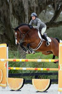 Danica Meyerhoff - Show Jumping Lesson Auction Items, Show Jumping, Horses, Animals, Animais, Animales, Animaux, Animal, Hunter Jumper