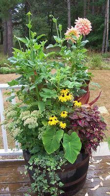 Wow factor plus perennials! Large Garden Planters, Flower Planters, Garden Pots, Flower Pots, Garden Items, Green Garden, Wine Barrel Garden, Whiskey Barrel Planter, Whiskey Barrels