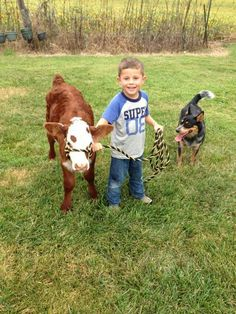 Nothin' like a boy, his dog & his calf :-)