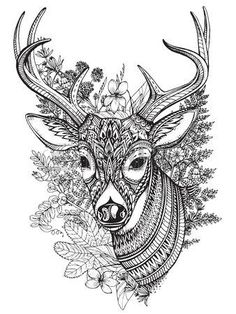 Hand drawn vector horned deer with high details ornament, flowers and herbs on white background photo