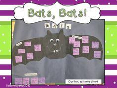 Mrs Jump's class: Bats, Bats, Bats! and what's coming up....
