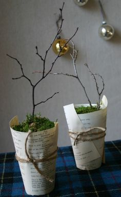 Simple topiary idea  A small grouping would be a cute, easy, inexpensive centerpiece