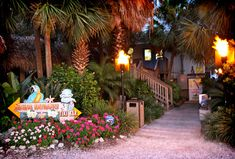The Blue Parrot on St. George Island... My fave place to eat on SGI where the late great architect Larry Burke is honored by a plaque as you enter the  walkway. Miss you Larry.
