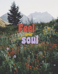 Love Quotes feel your soul nature is part of Wallpaper quotes - Love Quotes QUOTATION Image As the quote says Description feel your soul nature Pretty Words, Beautiful Words, Cool Words, Beautiful Pictures, Wallpaper Quotes, Iphone Wallpaper, Hippie Wallpaper, Watch Wallpaper, 70s Aesthetic