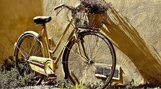 Das Fahrrad ist angesagt: Umweltfreundlich, flexibel und gerne auch mit individuellem Chic erobert das Fahrrad nicht nur die Städte.