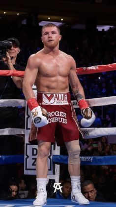 cinnamon- canelo cinnamon - – Graffiti World Kick Boxing, Sport Boxing, Mma Boxing, Boxing Workout, Saul Canelo Alvarez, Boxing Images, Boxing History, Graffiti Designs, Boxing Champions
