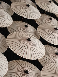 Jackson Carson photography 2010   |  Japanese Umbrellas Japanese Culture, Japanese Art, Under My Umbrella, Umbrella Art, Oil Paper Umbrella, White Umbrella, Umbrella Cover, No Rain, Foto Art