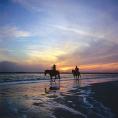 ...ride horses on the beach...