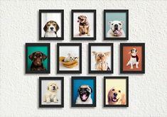 Kit 10 Quadros Cachorro Pet Shop Clínica Veterinária Decorac no Elo7 | Jupi Artes (12FC46F) Pet Shop, Bernese Dog, Frame, Dogs, Store, Board, Home Decor, Pet Store, Pets