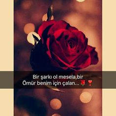 Resimli Aşk Sözleri İndir - Best of Wallpapers for Andriod and ios 4k Phone Wallpapers, 4k Wallpaper Iphone, Love Quotes Download, Love Promise, Love Quotes Wallpaper, Most Beautiful Wallpaper, Romantic Love Quotes, Free Iphone, Book Quotes
