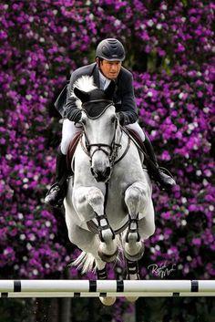 Fantastic Horse Jumping Photo!