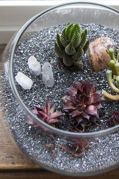 DIY desert terrarium tutorial
