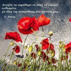 Greek Quotes, Quotations, Me Quotes, Wisdom, Words, Flowers, Pictures, Sayings, Greek