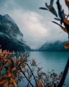 A gloomy day in Lake Louise. Photo by Gloomy Day, Taken For Granted, Lightroom Presets, The Outsiders, Mountains, Grateful, Tired, Filters, Happiness