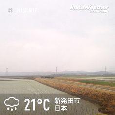 おはようございます! 時おり激しい雨になってます〜(汗