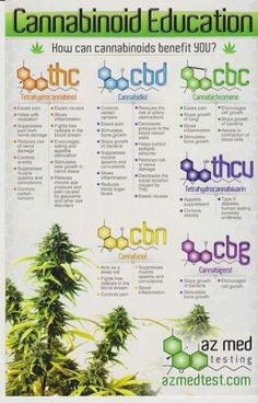 Cannabinoid Education Infographic: What are Cannabinoids & how can they benefit patients?