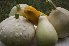 Supergrădinărit 2015 Eggplant, Pear, Gardening, Fruit, Vegetables, Food, Lawn And Garden, Essen, Eggplants