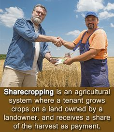 Explanation of sharecropping system